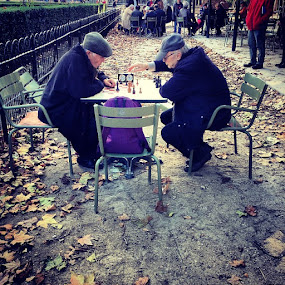 by Jason Brooks - People Portraits of Men ( park, simple, art, chess, intense, leaves, intensechess, love, paris, simple life, battle, france, men, passion, , Chair, Chairs, Sitting, people, crowd, humanity, society, Urban, City, Lifestyle )