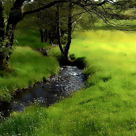 Lake District  by Kevin Morris - Landscapes Prairies, Meadows & Fields