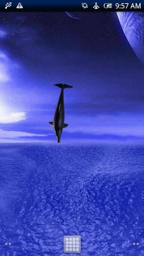 Dolphin☆Fly