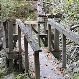 Bridge to nowhere  by Dale Carney - Buildings & Architecture Bridges & Suspended Structures ( nature, bridges, hiking )
