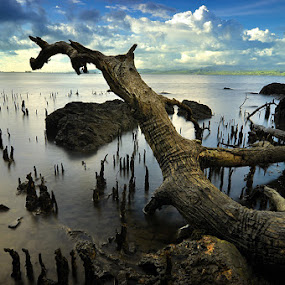 Sea Dragon by Hajar Wisnu Dwiputra - Landscapes Waterscapes