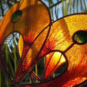 Butterfly Wings by Alan Hammond - Artistic Objects Still Life ( still life, artistic objects,  )