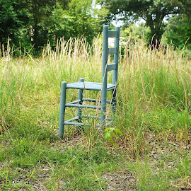 Blue Chair in a Meadow by Keith Bass - Artistic Objects Furniture ( field, blue chair, chair, arkansas photographer, ladder back chair, ladder back, meadow, furniture, arkansas, Chair, Chairs, Sitting )