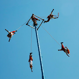 Ceremony of Los Voladores (Flying Men) by Núria Pérez Marañón - News & Events World Events ( wind, dancing, freedom, ritual, mexico, flyers, mejico, heritage, unesco, voladores, risk, flying, sky, mexic, blue, tradition, culture )