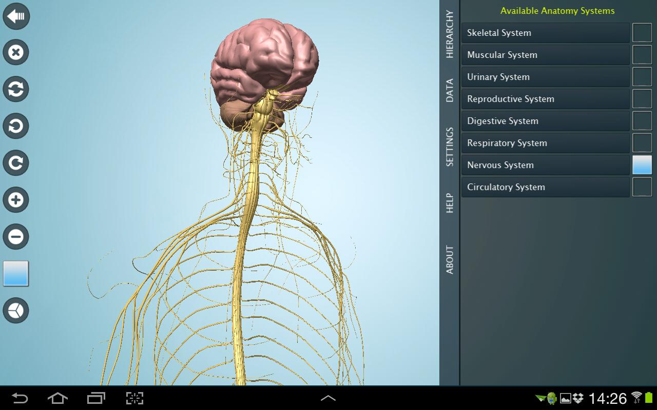 Anatomy 3D Pro - Anatronica Screenshot 5