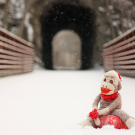 Winter Sock Monkey by Julie Evenson - Artistic Objects Toys (  )