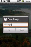 Screenshot of Internet Image Search