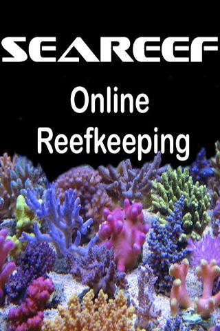 Seareef Reef Forums