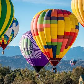 by Robert Keas - Transportation Other ( arizona, lake havasu, balloons, river )