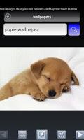 Screenshot of Wallpaper Search&Auto Changer