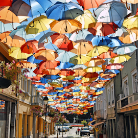 Umbrella Street by Antonio Amen - City,  Street & Park  Street Scenes ( umbrellas, umbrella sky, color, street, umbrella )