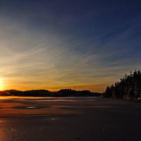 Winter by Inna Cleanbergen - Landscapes Sunsets & Sunrises