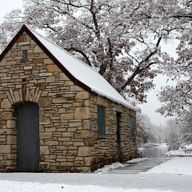 Little House in the Snow by Cindi Norris - City,  Street & Park  City Parks ( winter, snow, path, stone, woods,  )