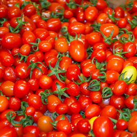 Baby Tomatoes by Ranjith K.U. - Nature Up Close Gardens & Produce ( baby tomatoes, tomatoes )