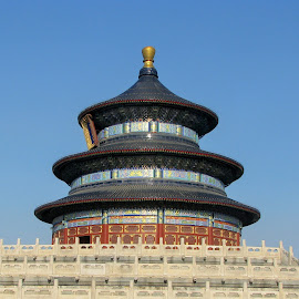 Temple of Heaven, Beijing, China by Kurt Bailey - Buildings & Architecture Places of Worship
