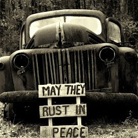 May they rust in peace by Reshmid Ramesh - Transportation Automobiles ( car, automobile, vehicle, rusty, graveyard )