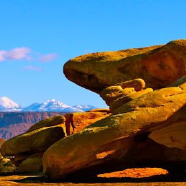 Beyond the rock pile by Darlene Dunnum - Landscapes Mountains & Hills ( mountains, national park, rock formations, utah, canyon )