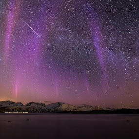 Purple light by Benny Høynes - Landscapes Starscapes ( cn, northern lights, aurora borealis, norway, colours )