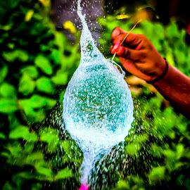 Perfect Timing by Tharmapalan Tilaxan - Nature Up Close Water