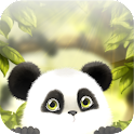 Panda Chub Live Wallpaper icon