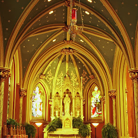New York City church by Suzanne Black - Buildings & Architecture Places of Worship ( building, interior, worship )