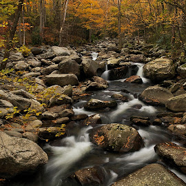 Fallings Waters by Rob Wilson - Landscapes Waterscapes ( waterfalls, creekside trails, great smoky mountains national park, hiking in the smokies, forests and creeks, fall colors in the smokies )