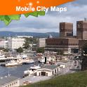 Oslo Street Map icon