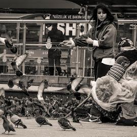 Feeding the Pigeons  by Mihai Nicolae - City,  Street & Park  Street Scenes ( pigeons, streetphotography, old lady, portraits of women, feeding, street scene, street photo, feeding the pigeons, portrait )