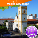 Natal Street Map icon