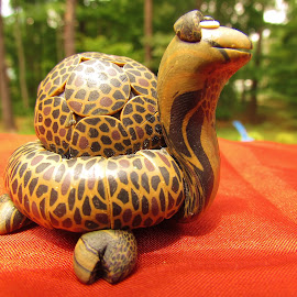 The Tiny Turtle by Christine Keaton - Artistic Objects Antiques (  )