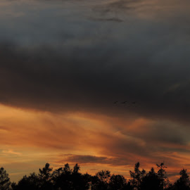 Autumn sunset. by Carolyn Kernan - Landscapes Cloud Formations