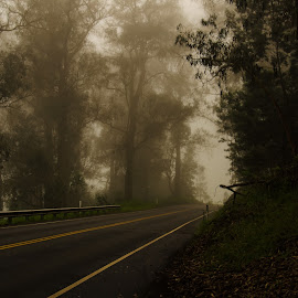 The road through the clouds to Haleakala  Maui by Don Wade - Landscapes Cloud Formations ( mountain, maui haleakala  tour hi )