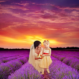 Sunset in the Lavender by Alan Evans - Wedding Other ( wedding photography, purple, field of purple, aj photography, lavendula, wedding dress, lavender, flowergirl, wedding gown, wedding, wedding day, sunset, geelong wedding photographer, bride, flowers,  )