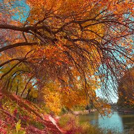 by Lux Aeterna - City,  Street & Park  City Parks (  )