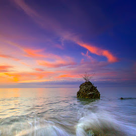 a little dancer by Ipin Utoyo - Landscapes Travel