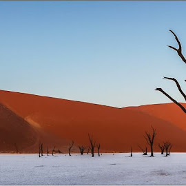 Solitude by Rick Venter - Landscapes Deserts