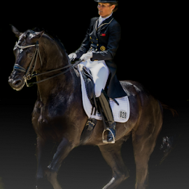 Dressage by Erik Kunddahl - Sports & Fitness Other Sports ( equine, equipage, dressage, riding, equstrian, horse )