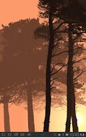 Screenshot of Misty Forest