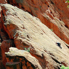 Rock Climbing by Leong Jeam Wong - Sports & Fitness Climbing ( climbing, hill, mountain, gardens of the gods, rock, colorado spring )