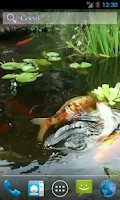 Screenshot of Japanese Koi Fish Wallpaper