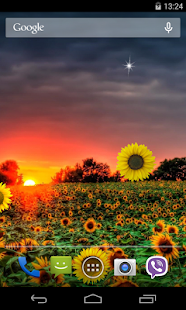 Sunflower Live Wallpaper - screenshot