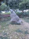 Kangaroo Stone