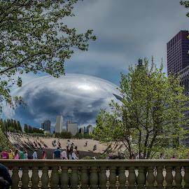 Chicago Bean by Laimis Urbonas - City,  Street & Park  City Parks ( park, buildings, chicago bean, chicago, city, michigan ave )