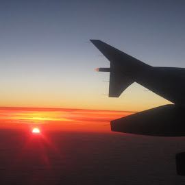 Morning has Risen! by Lisa Susin - Transportation Airplanes (  )