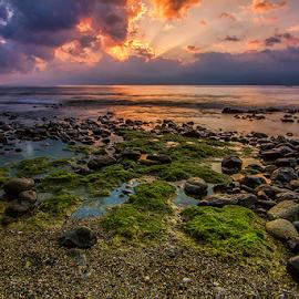 The Green  by Fadli 'Zazg' - Landscapes Beaches
