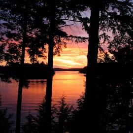 Wood Lake by Nick Goetz - Landscapes Sunsets & Sunrises ( sunset, trees, forest, lake, ontario, wood lake )