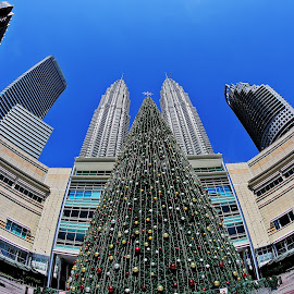 Xmas@KLCC by William Wong - Buildings & Architecture Other Exteriors ( klcc, tree, xmas, maxis, malaysia )