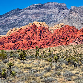 Red Rock Canyon by Michael Rogers - Landscapes Mountains & Hills