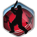 Box Cricket International 2016 APK Image