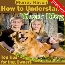 How to Understand Your Dog Pv